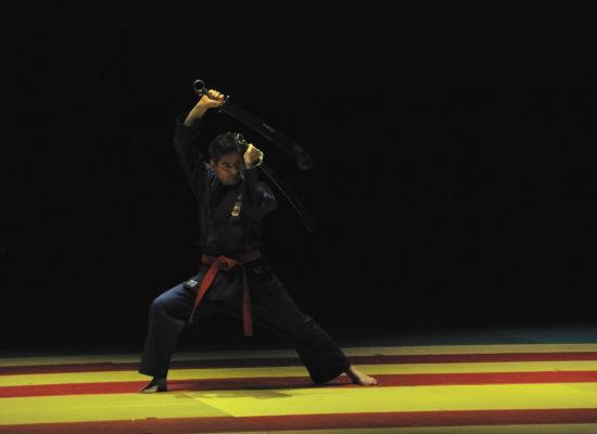 Démonstration Viêt Vo Dao - Double sabre