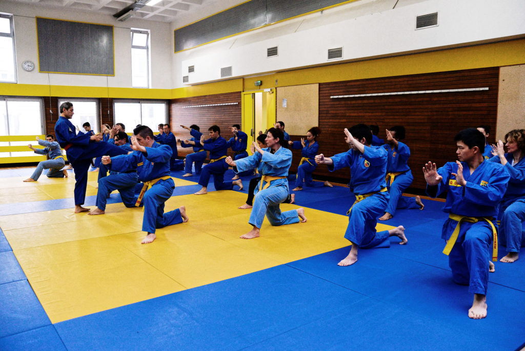 Travail de Quyen traditionnel - Stage Vovinam Paris