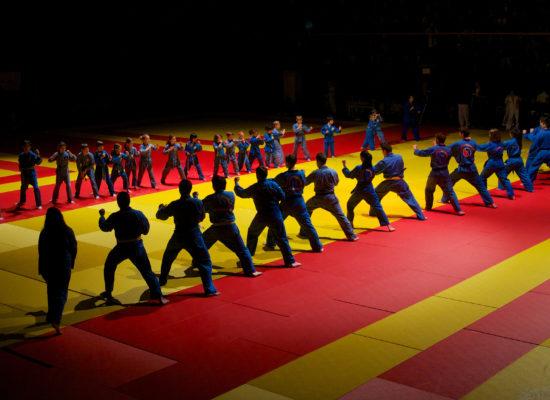 Démonstration Viêt Vo Dao - Self défense enfants