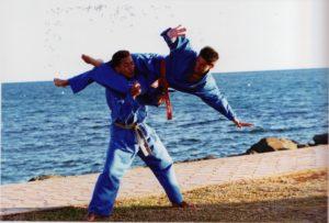 Technique de ciseaux volants - Vovinam